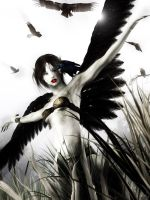 Mistress of the crows by Arwenone