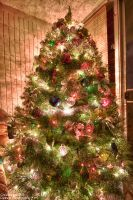 Merry Xmas HDR by Mgbedt420