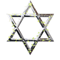 Star of David vine by Hermione75