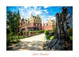 Bad Muskau - the castle 5 by calimer00