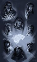 House Stark (study) by kallielef