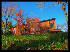 Fall Colors 2 - Resubmit by FlashKid105