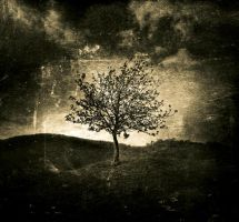 Foreshadow 2 by TheOn3LeftBehind