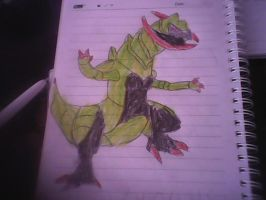 my drawings haxorus by piplupiloveyou