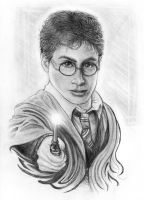 Harry Potter by VisAnastasis