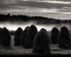 Haystacks by Nitrok