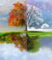 Change of Seasons by Holicia