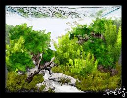 Aquasketch Bamboo Forest by StevenChong-no-GMF