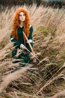 Merida 'Chase the wind and touch the sky..' by BakaMarionette