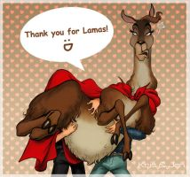 We love llamas. by jen-and-kris