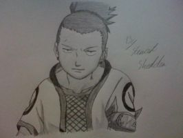 Shikamaru Nara from Naruto by captonstu