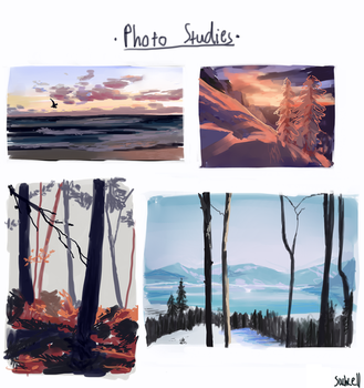 photo studies by sachcell