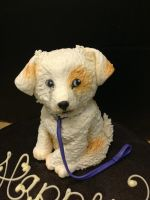 Puppy Cake close up by Spudnuts
