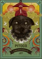 PITOCO by Webra-Creative-Lab