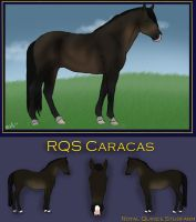 RQS CARACAS (sold) by RQsf