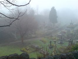 Foggy at the cemetery 17b by rudeturk