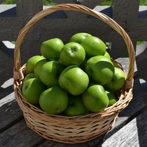 Apple Basket Stock by jojo22