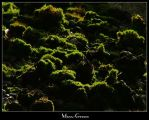 Moss-Green by Syllie