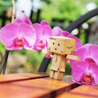 Danbo loves Orchids by Kara-a