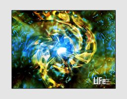 Life by neoweb