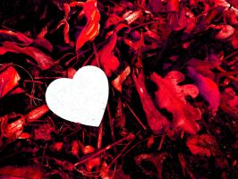 Fallen Leaves and a Loving Heart by Yaehara