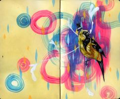 Oriole Moleskine Spread by manfishinc