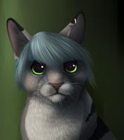 GreyKitty - Gift by TieWolf