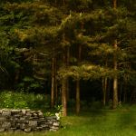 Nature stock 14 by CindysArt-Stock
