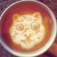Lil Bub latte by CappuccinoFrosting