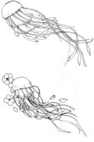 preliminary design: jellyfish by kitton