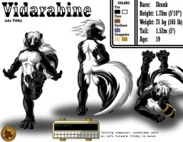 Character Sheet - Vidarabine by Lysozyme