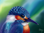 Kingfisher by Climmie