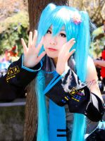 Miku Cos by HetChrome