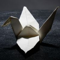 1000 cranes project by Loone-Wolf