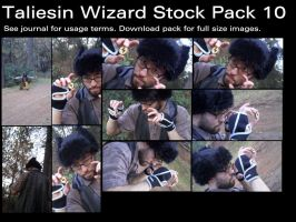 Taliesin Wizard Stock Pack 10 by Durkee341