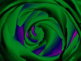 Green Contortional Petals of a Floran by jesus-at-art