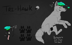 Tri-hawk Reference Sheet by xXZackataXx