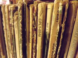 Records by RosethePoet