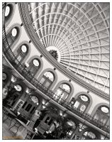 Corn Exchange by Encephalartos