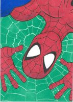 Spider-man Sketchcard by maxspider72