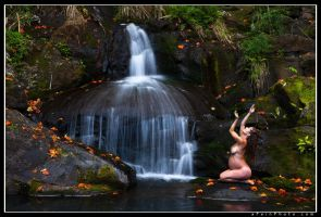 Call To The Falls by aFeinNude