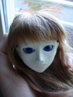 Handmade BJD Violet - Getting there by daiin