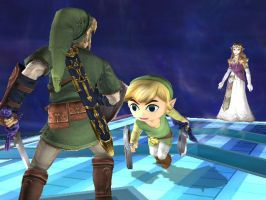 Toon Link finds a replacement by SSLinkDSC