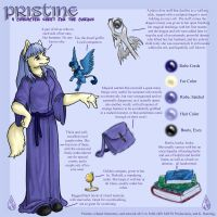 Pristine Character Sheet by causticardor