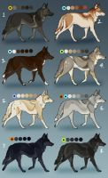 Coyote Semi-Natural Designs: CLOSED by Sedillo-Kennels