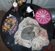 Still Life with Kitty-cat and Leaf Castings by Phaedris