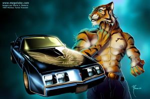 Tallyhawk_ Pontiac Turbo 1981 by Magolobo
