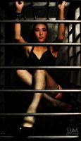 Bars by Lady-of-Slaughter