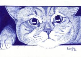 Hello Ballpoint Kittie by Cindy-R