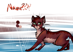 remember when i drew cats all the time by Diamondfeathers